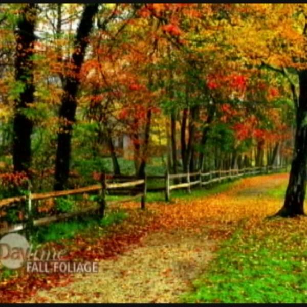 New ENgland and Canada fall foliage 2_26652