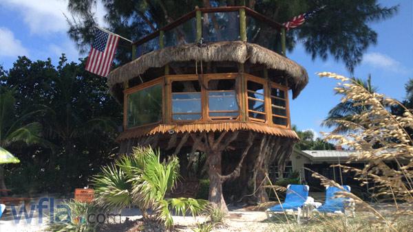 treehouse_71553