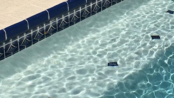 r-generic-swimming-pool-web_256881