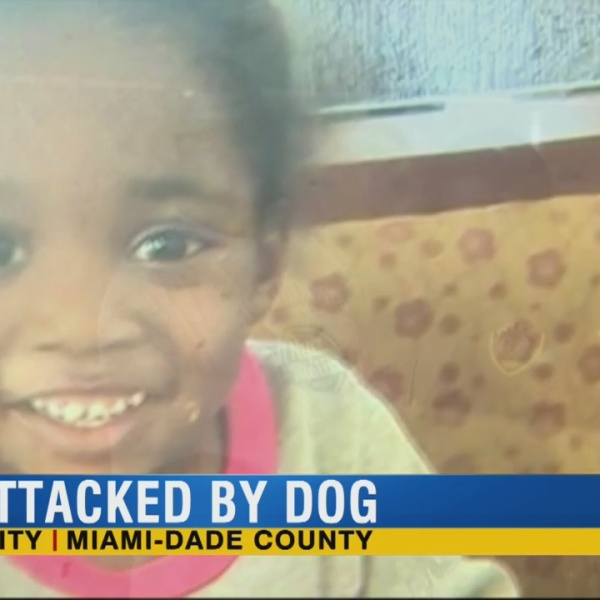3-year-old Florida girl severely mauled in dog attack