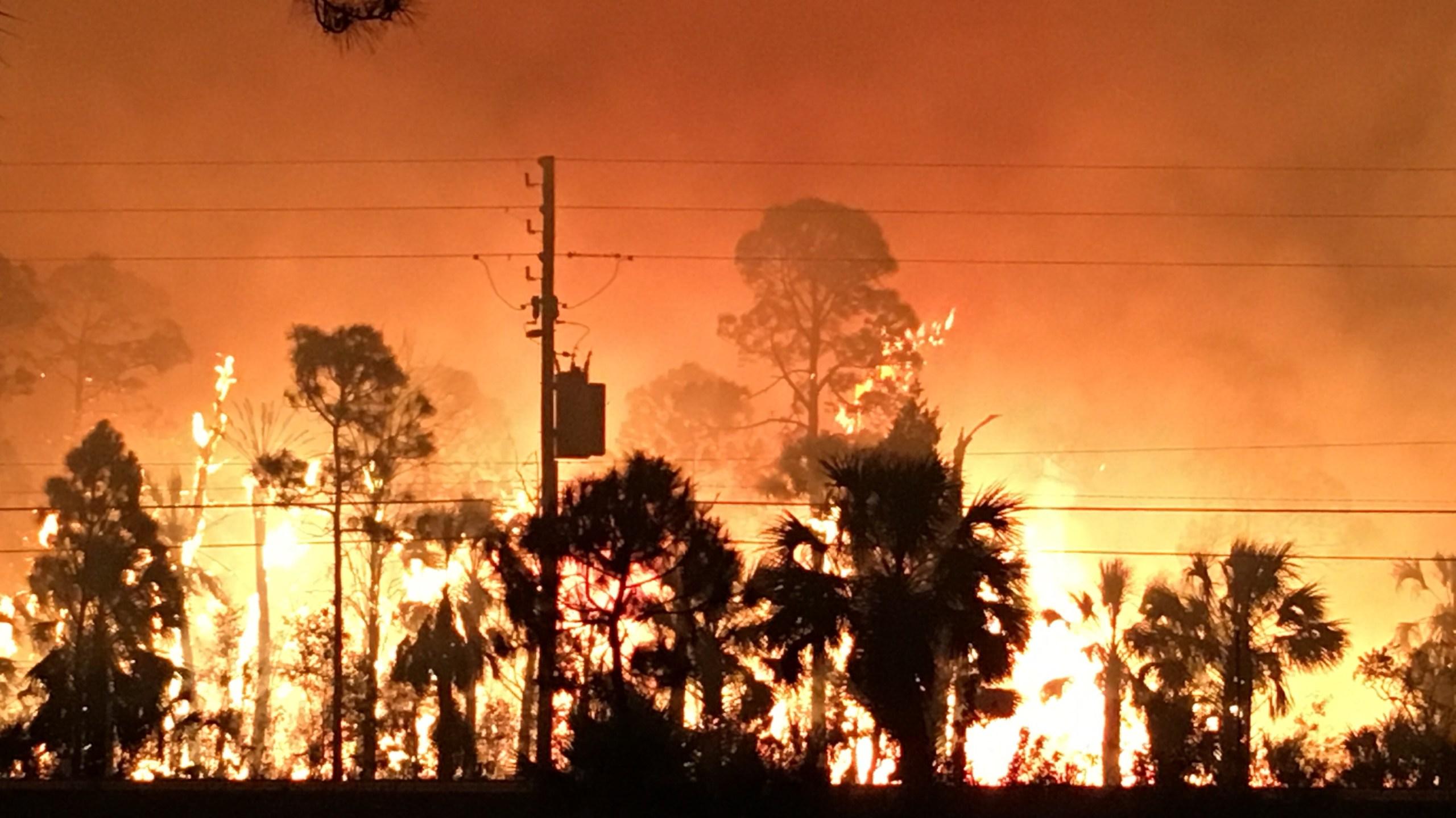 hernando fire 3_338363