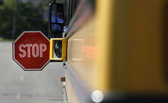 School Bus Cameras Tickets_468415