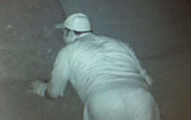 burglar_509882