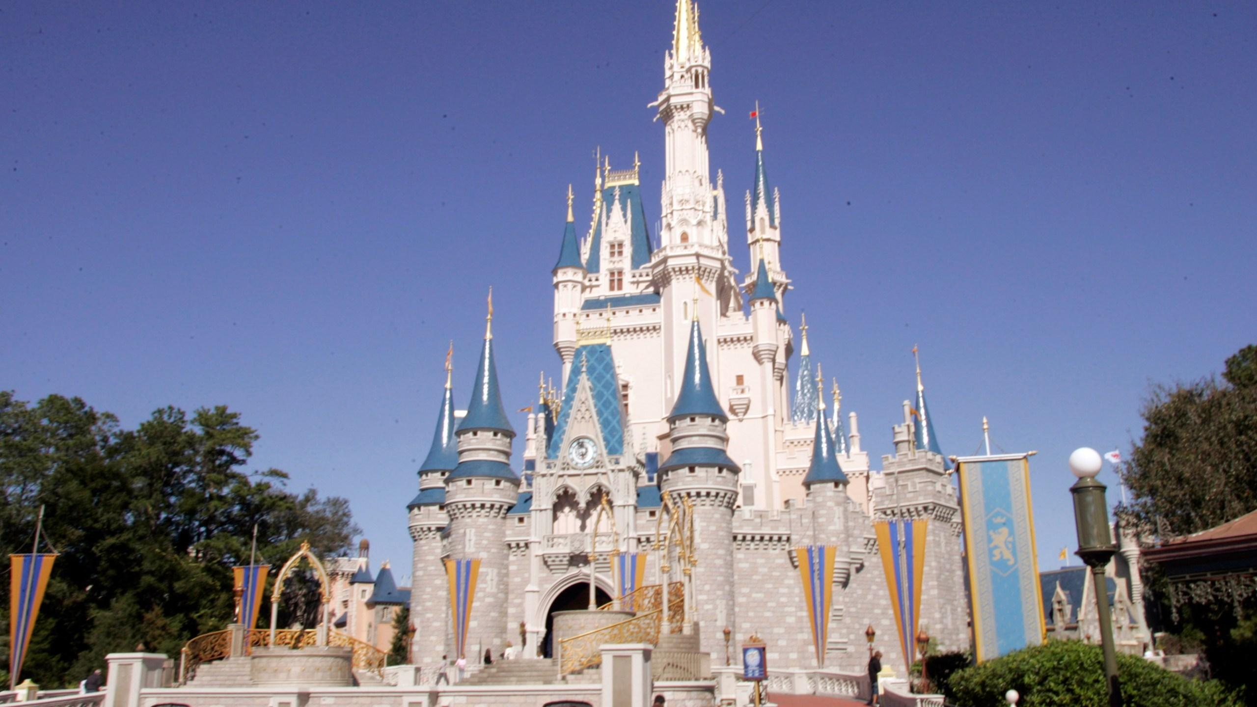 Travel Trip Florida Spring Training_532350