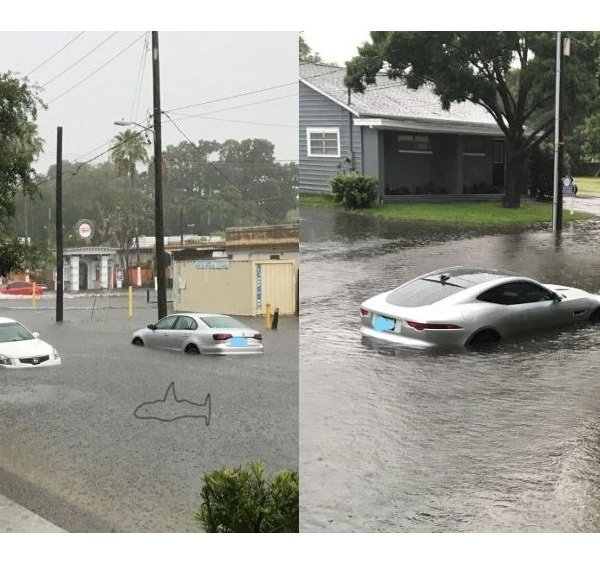 Flooding in South Tampa