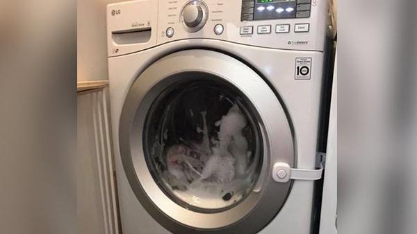 washing machine_1531819374259.png.jpg