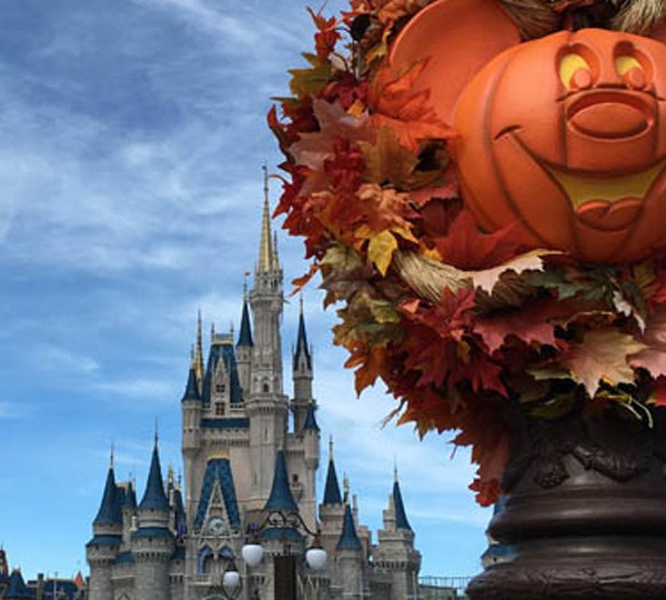 Mickeys-Not-So-Scary-Hallow_1534367085227.jpg