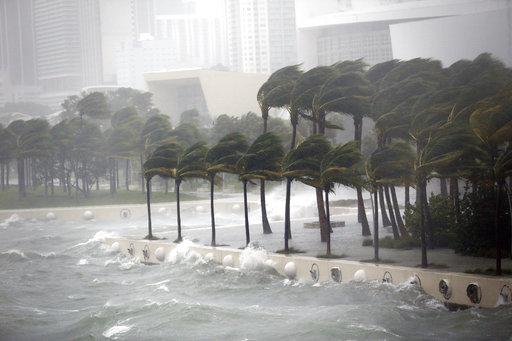 Hurricane Irma_447702
