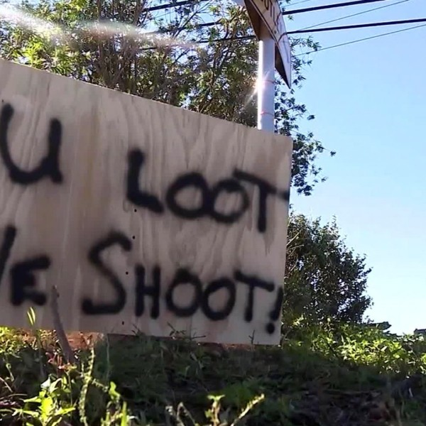 Looter shot and killed by authorities