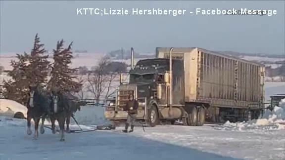 Horses pull stuck semi-truck up icy driveway, video goes viral