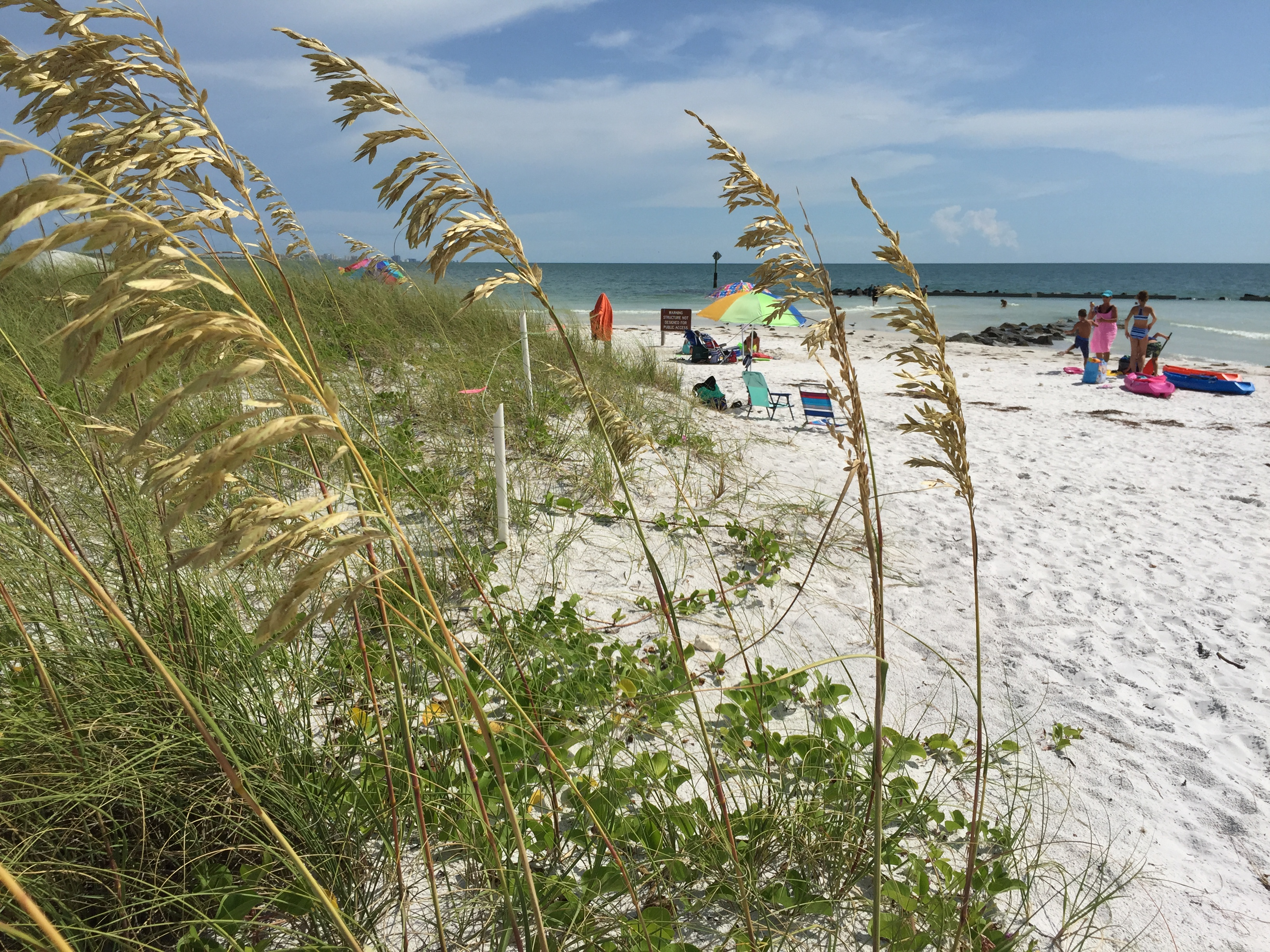 Nude Beach Videos topless event planned at honeymoon island state park