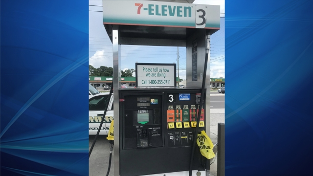 See where skimmers have been found in Tampa Bay