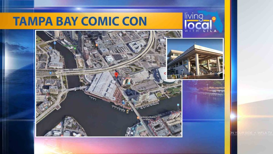 Comic Con celebrates 10 years at Tampa Bay festival | WFLA