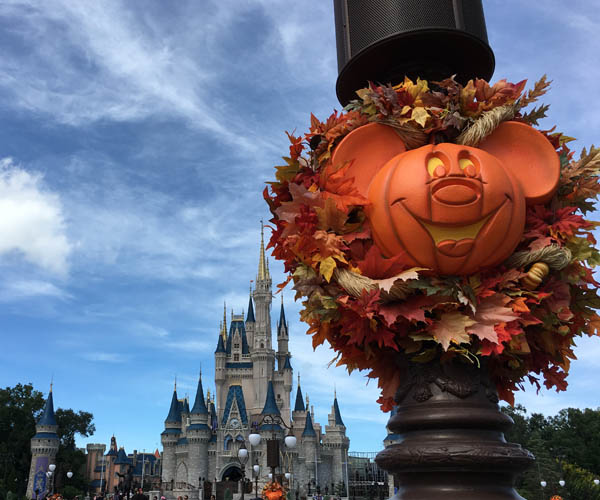 From spooktacular fun to tasty treats, check out fall fun at Walt Disney World