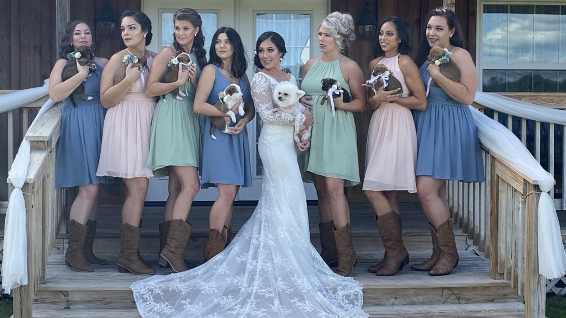 Tampa Bay Bride Has Bridesmaids Carry Puppies Instead Of Bouquets