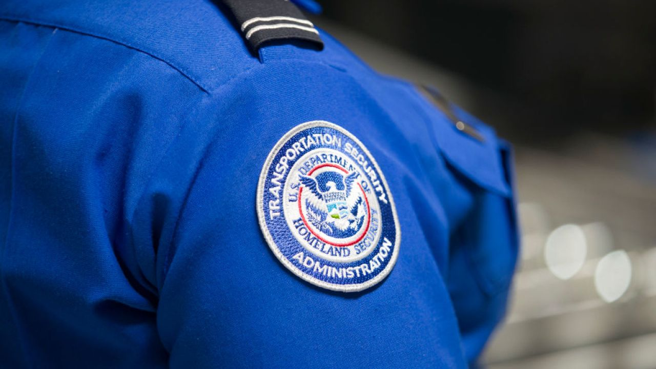 TSA finds triple the normal amount of guns in July, despite air travel remaining low