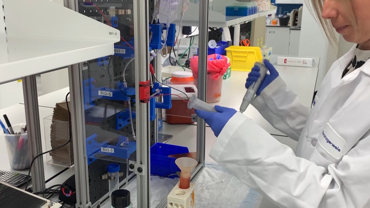 Tampa company that developed cancer vaccine expanding human clinical trials