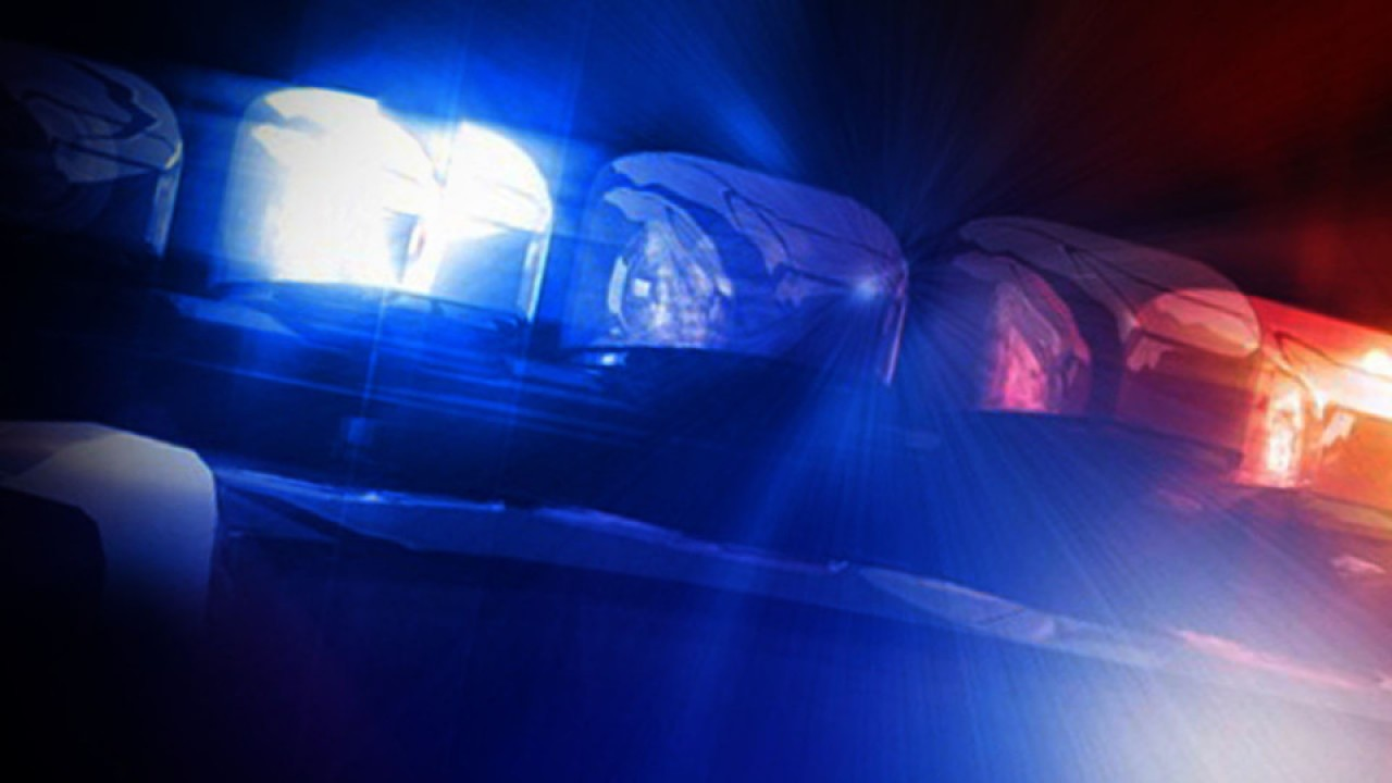 Police: Woman's body found at Tampa park