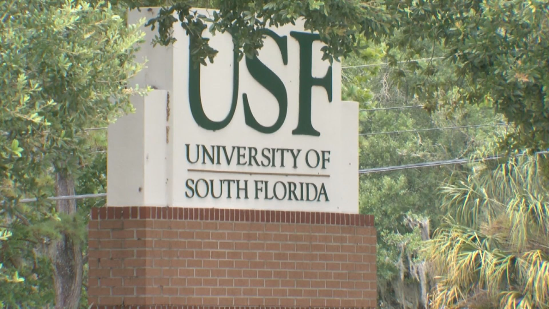 Usf 2022 Calendar.Usf Announces In Person Graduation Ceremonies Will Feature Names Being Announced Wfla