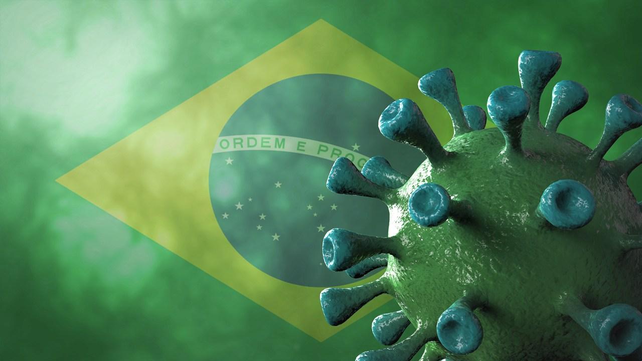 brazil variant - photo #44